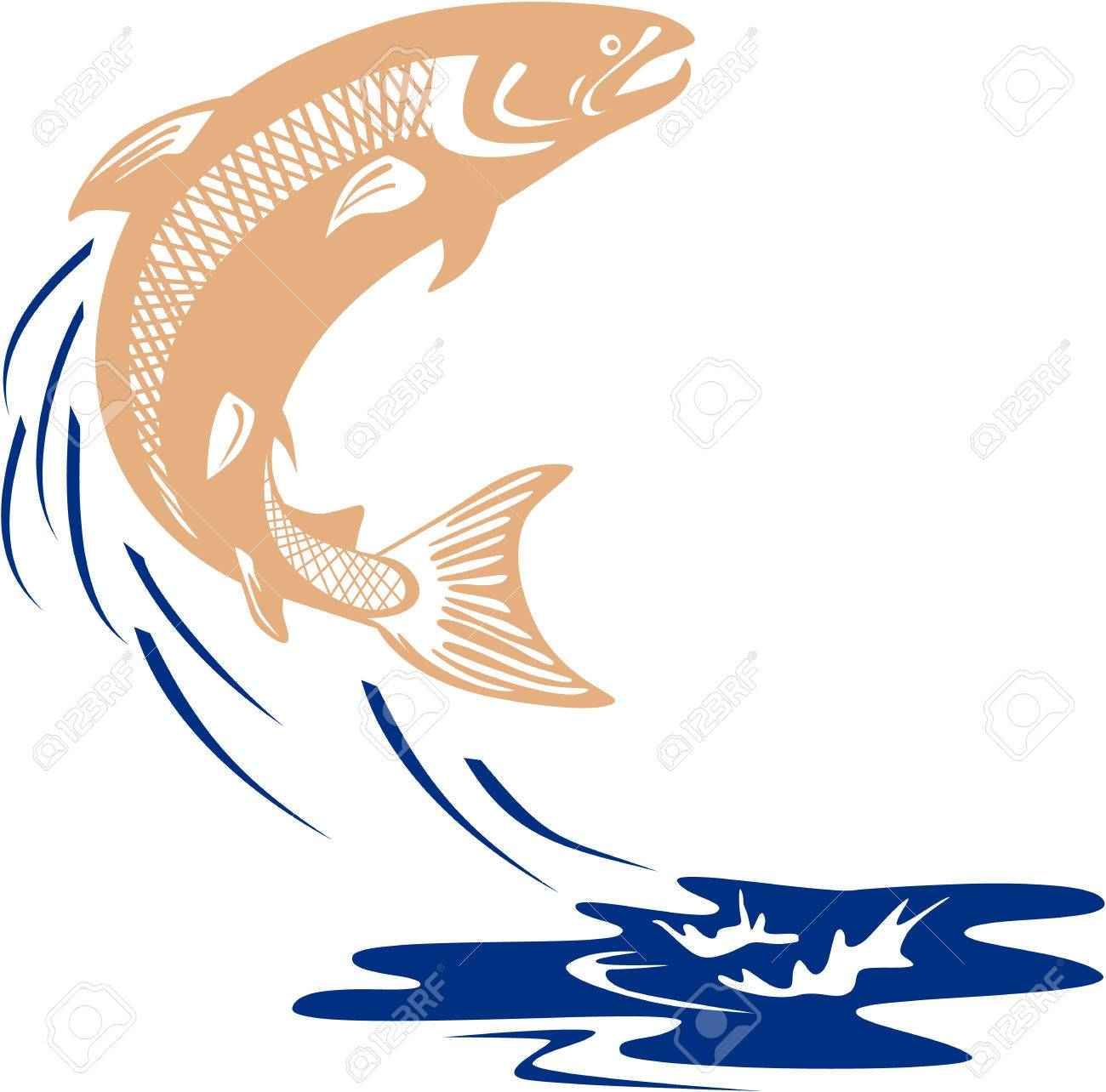 Illustration of a salmon fish jumping in water set on isolated white background viewed from the side done in retro style. - 40080539