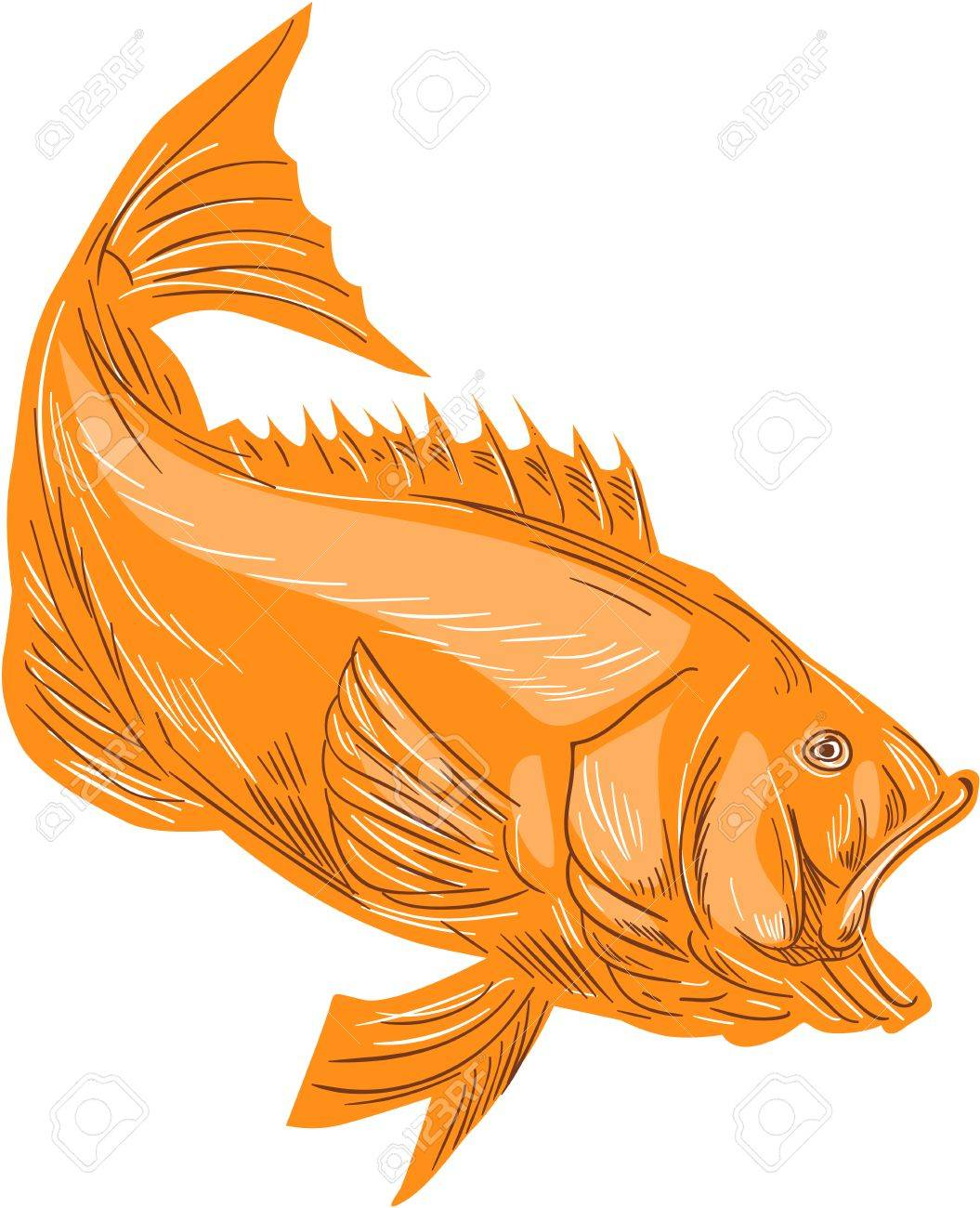 Drawing Sketch Style Illustration Of A Largemouth Bass Fish Diving