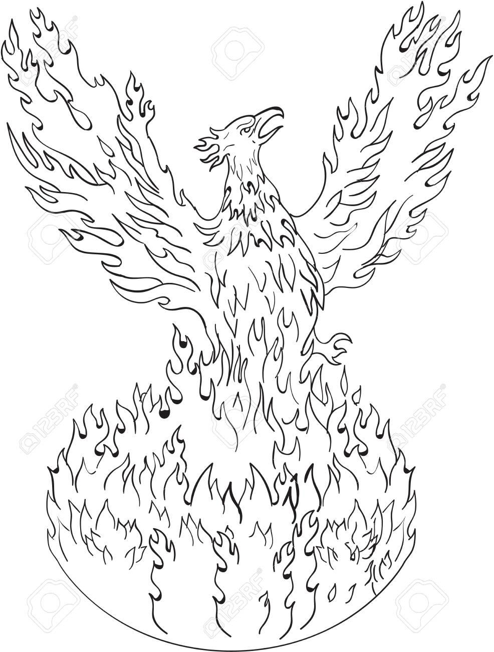 Dessin Illustration De Style De Croquis Dun Phénix Sélevant De Flammes Ardentes Ailes Levées Pour Le Vol Effectué En Noir Et Blanc Sur Fond Blanc