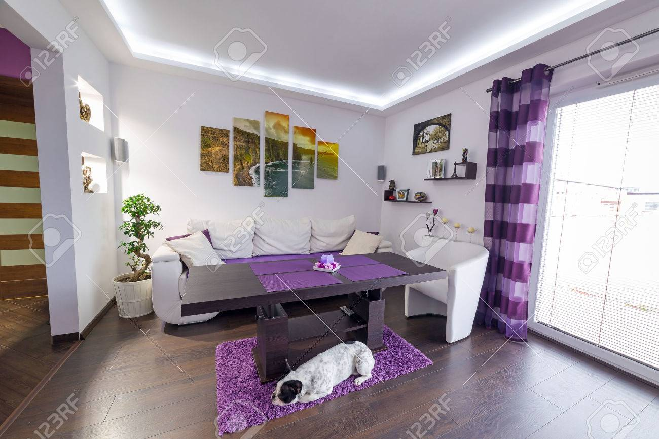 Modern living room interior with dog on the floor Stock Photo - 55670668