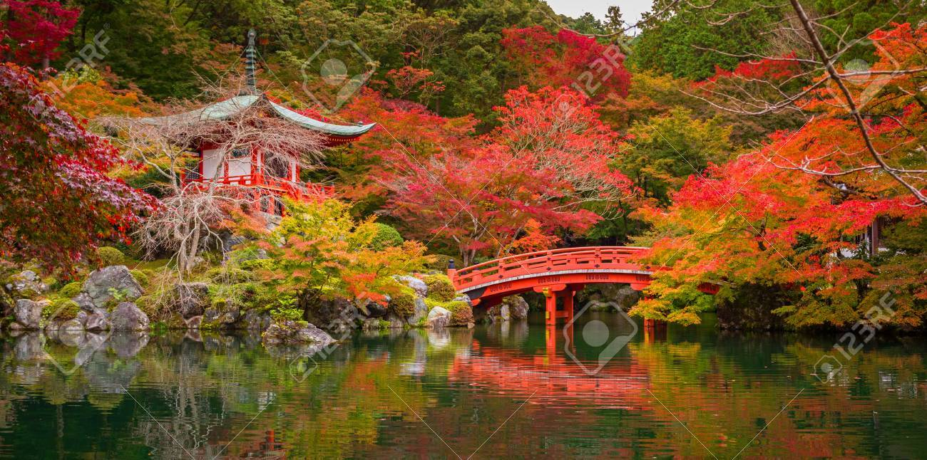 Beautiful Autumn In Japanese Garden With Colorful Maple Trees ...