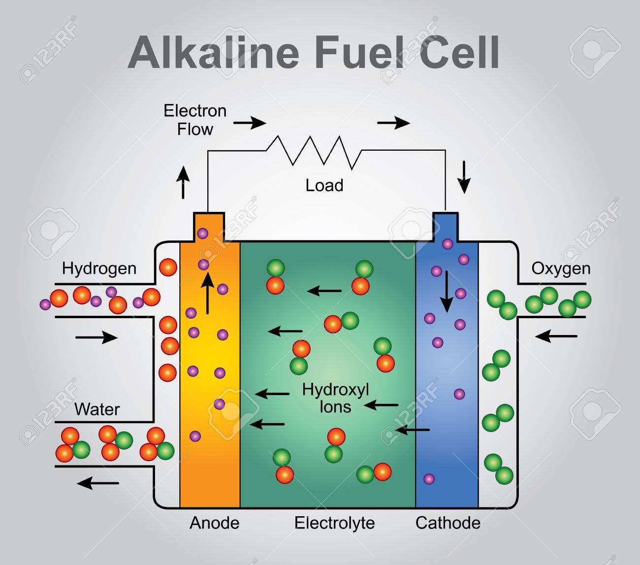 The alkaline fuel cell, also known as the Bacon fuel cell after