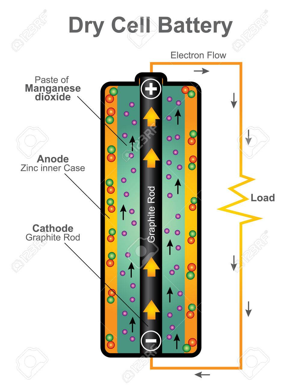 Electrolyte In A Dry Cell Battery Worksheet And Wiring Diagram Of Leclanche Uses Paste With Only Enough Moisture Rh 123rf Com Replacement Chart