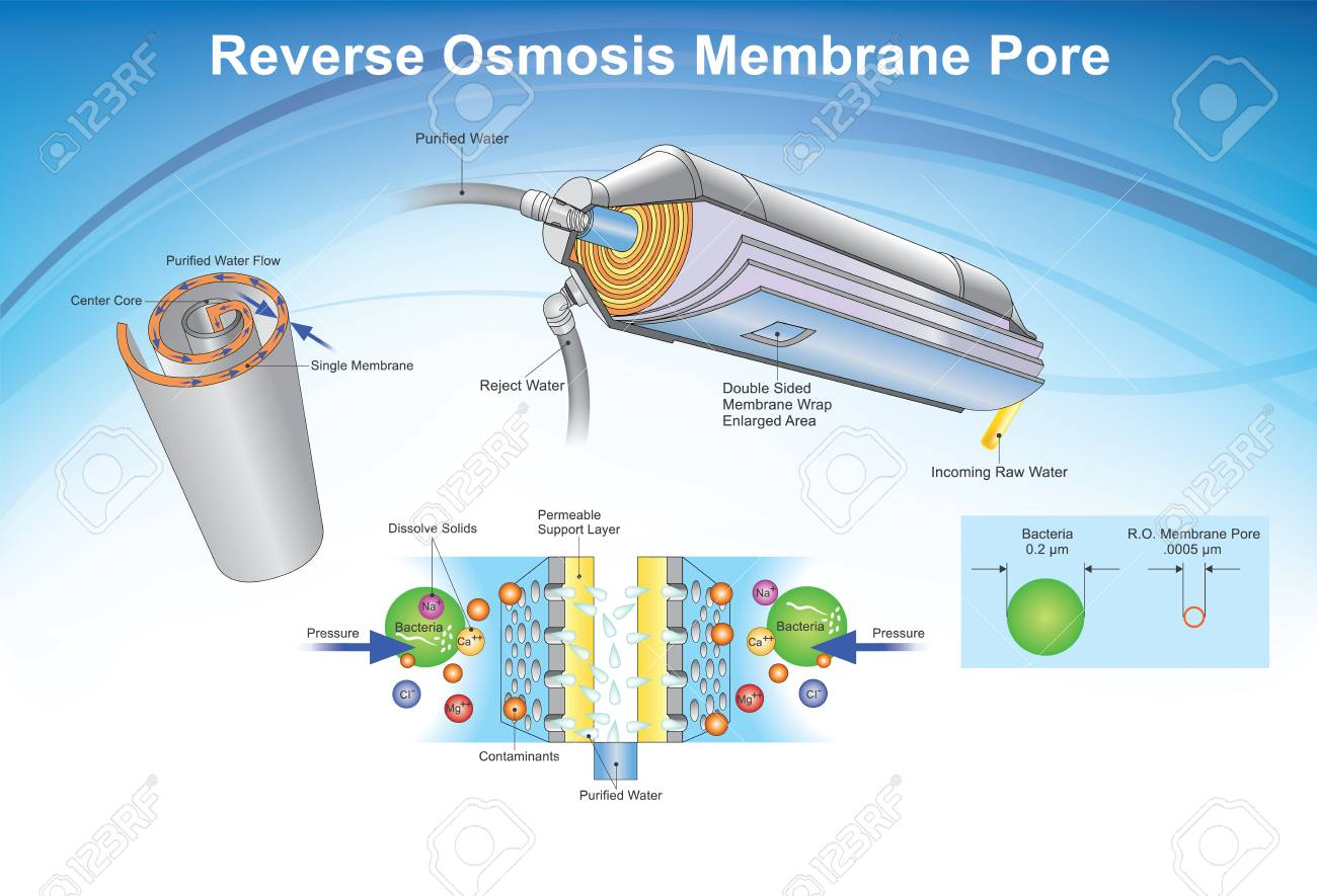 Reverse osmosis (RO) is a water purification technology that uses a semipermeable membrane to remove ions, molecules, and larger particles from drinking water. Info graphic, Illustration. - 96877991