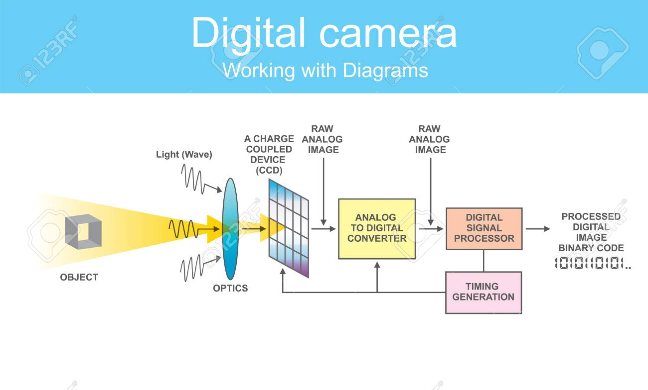 Digital single-lens reflex camera is a digital camera that combines the optics with a digital imaging sensor, as opposed to photographic film. - 104459908