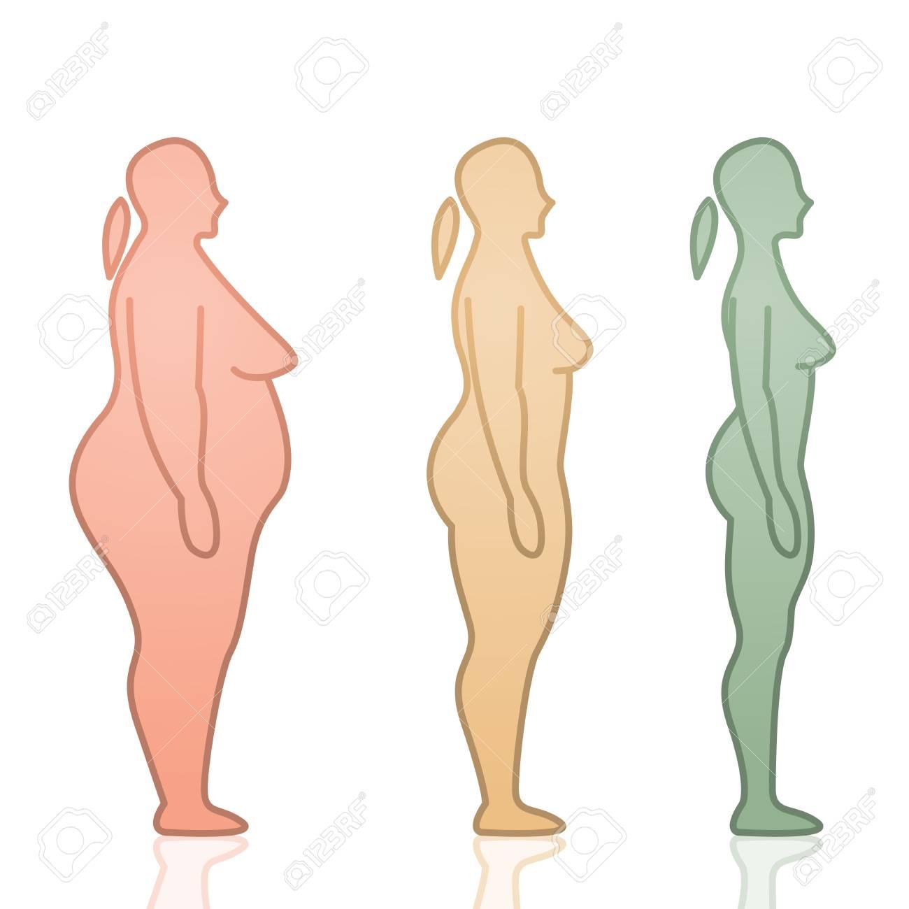 Ilustración De Vector De Gordo A Flaco Femenino Siluetas Icono Plana Diseño