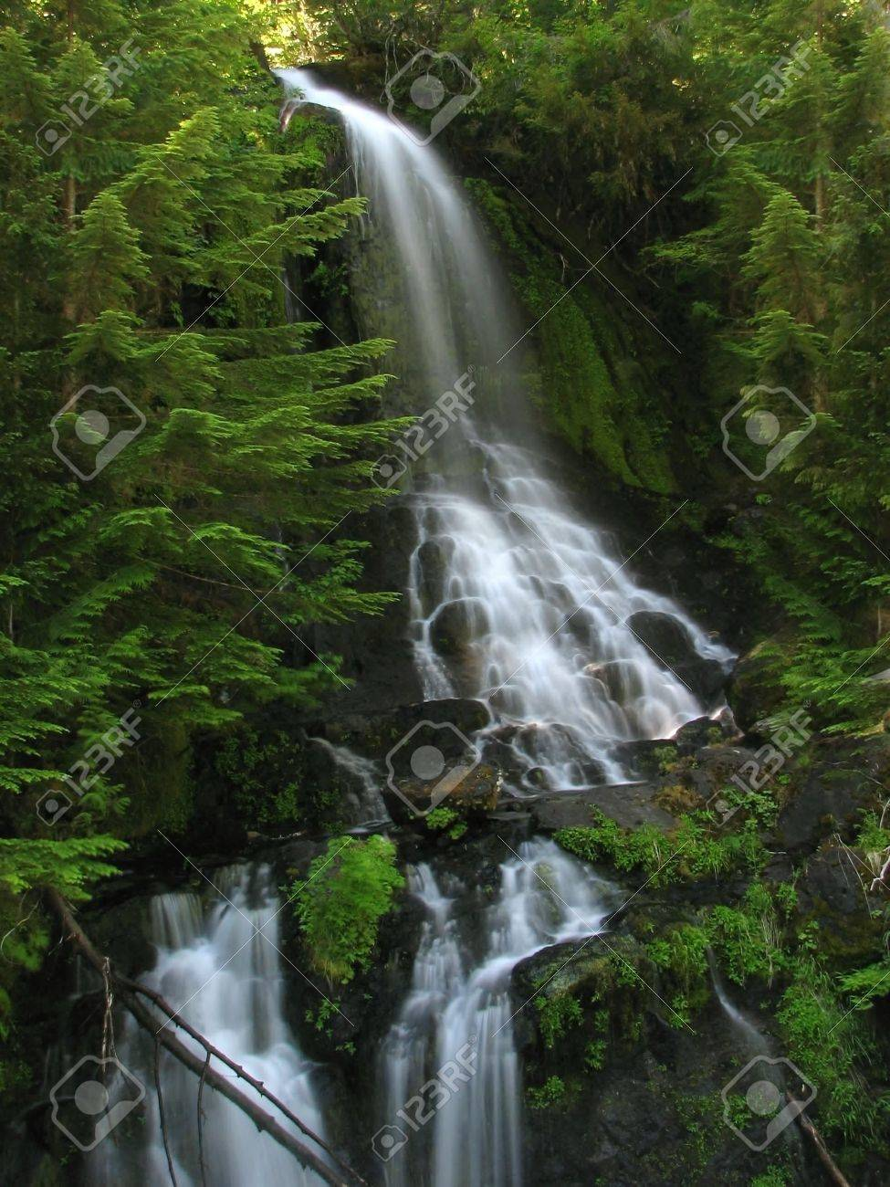 Waterfall in lush, green forest Stock Photo - 3008342