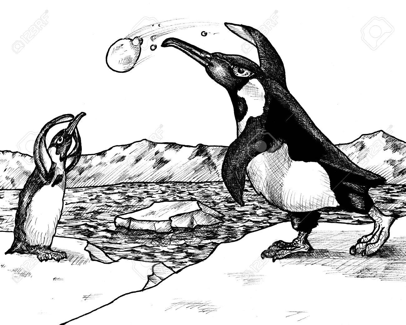 Line Drawing Penguin : Ink drawing of two penguins having a snowball fight at the north