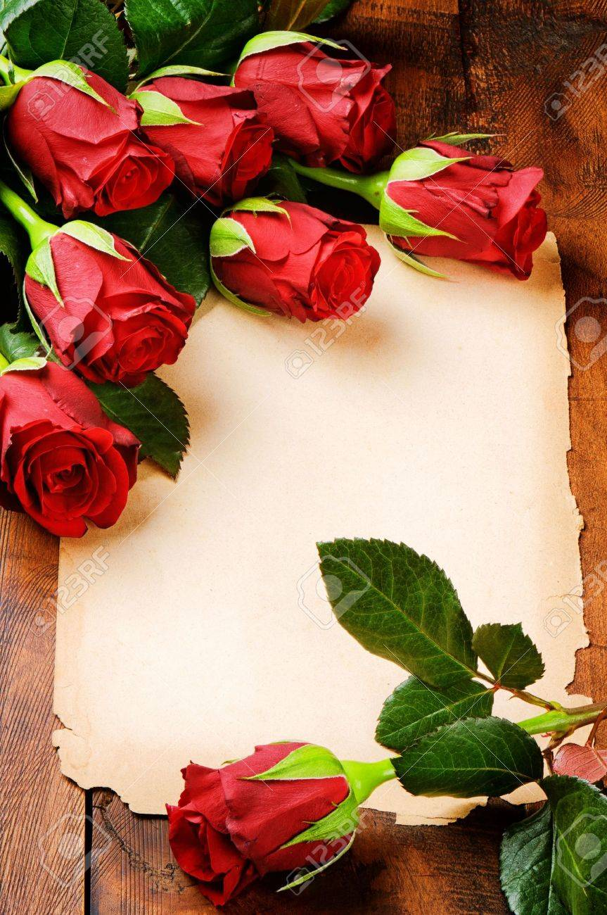 romantic frame with red roses and vintage paper stock photo, Beautiful flower