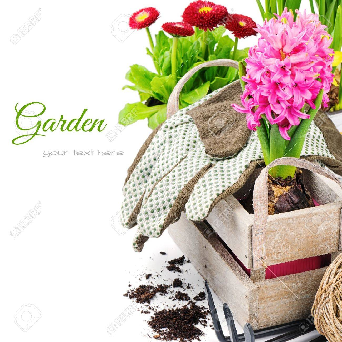 Colorful flowers and garden tools isolated over white Stock Photo - 19114238