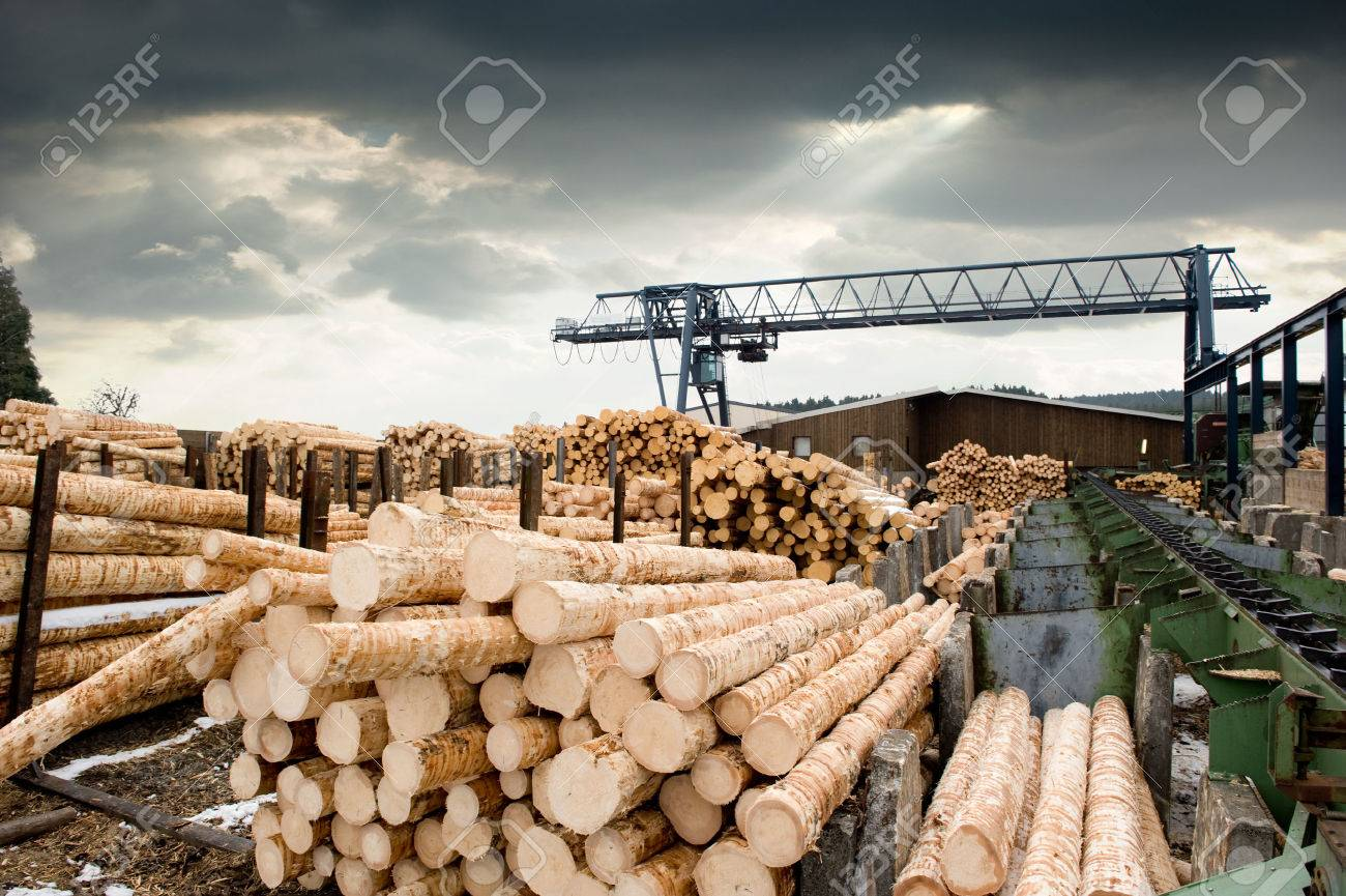 Sawmill (lumber mill) - 51758375