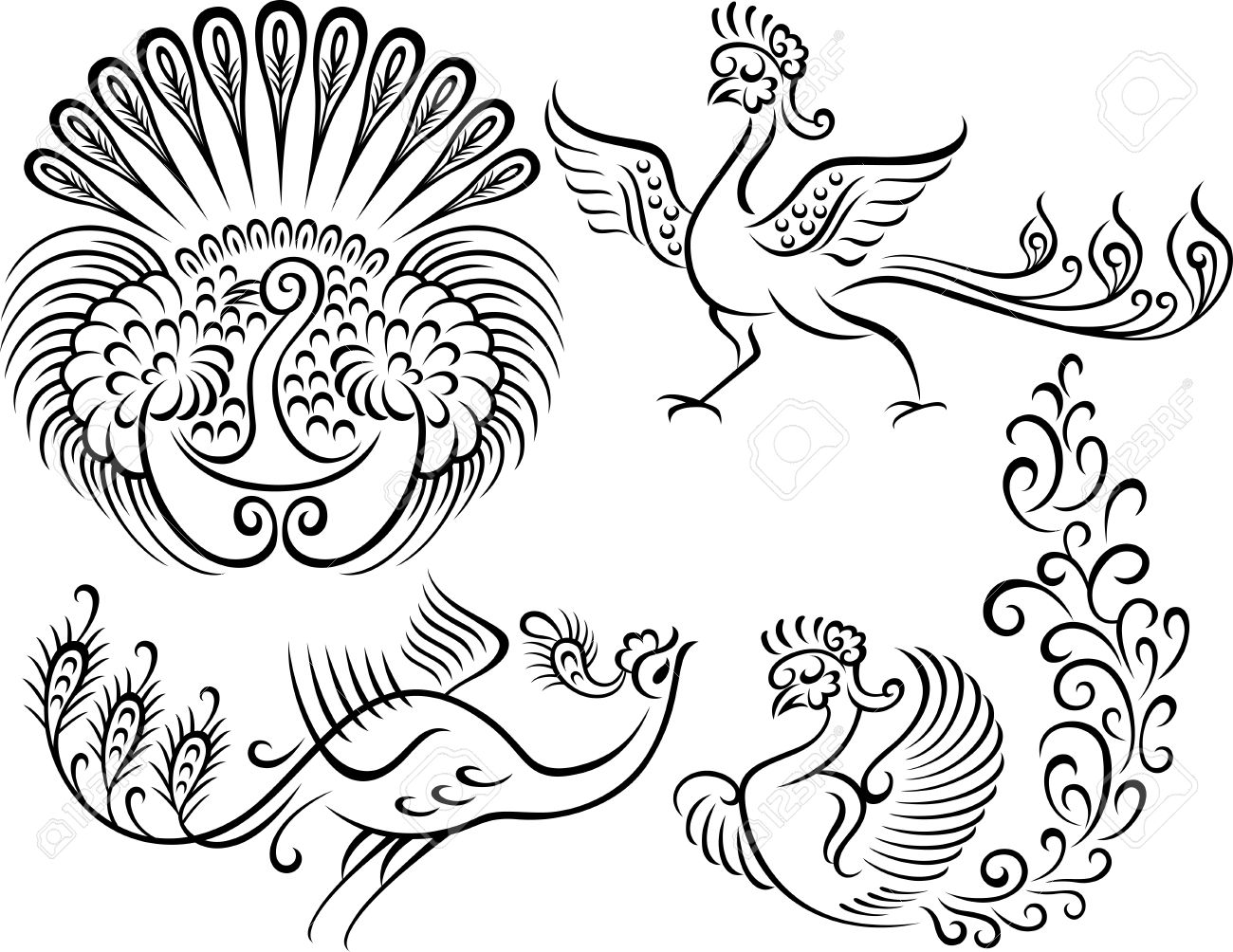 bird peacock style tattoo Peacock Pattern Outline