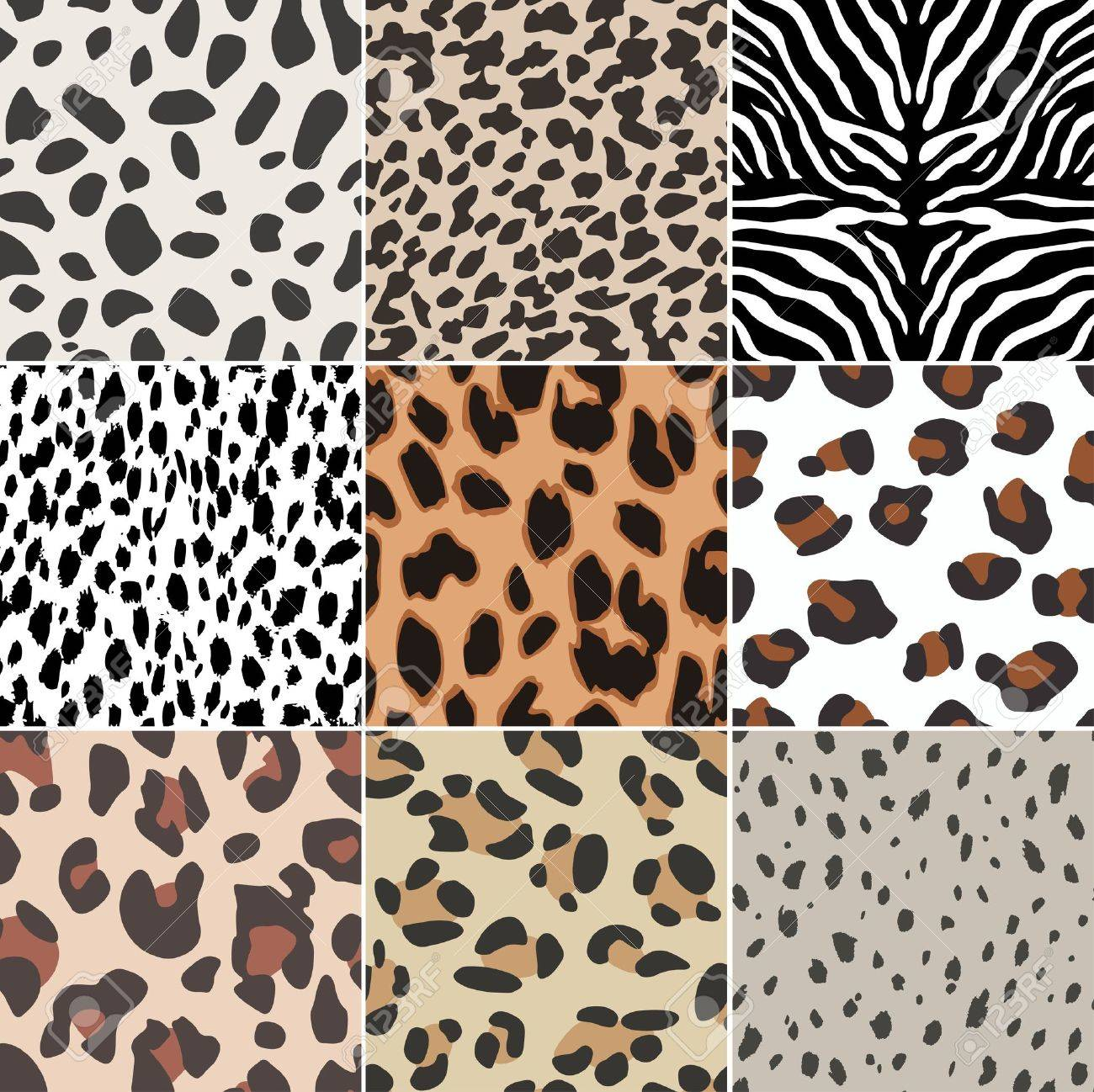 Animal Prints Animal Prints Images Stock Pictures Royalty Free Animal Prints