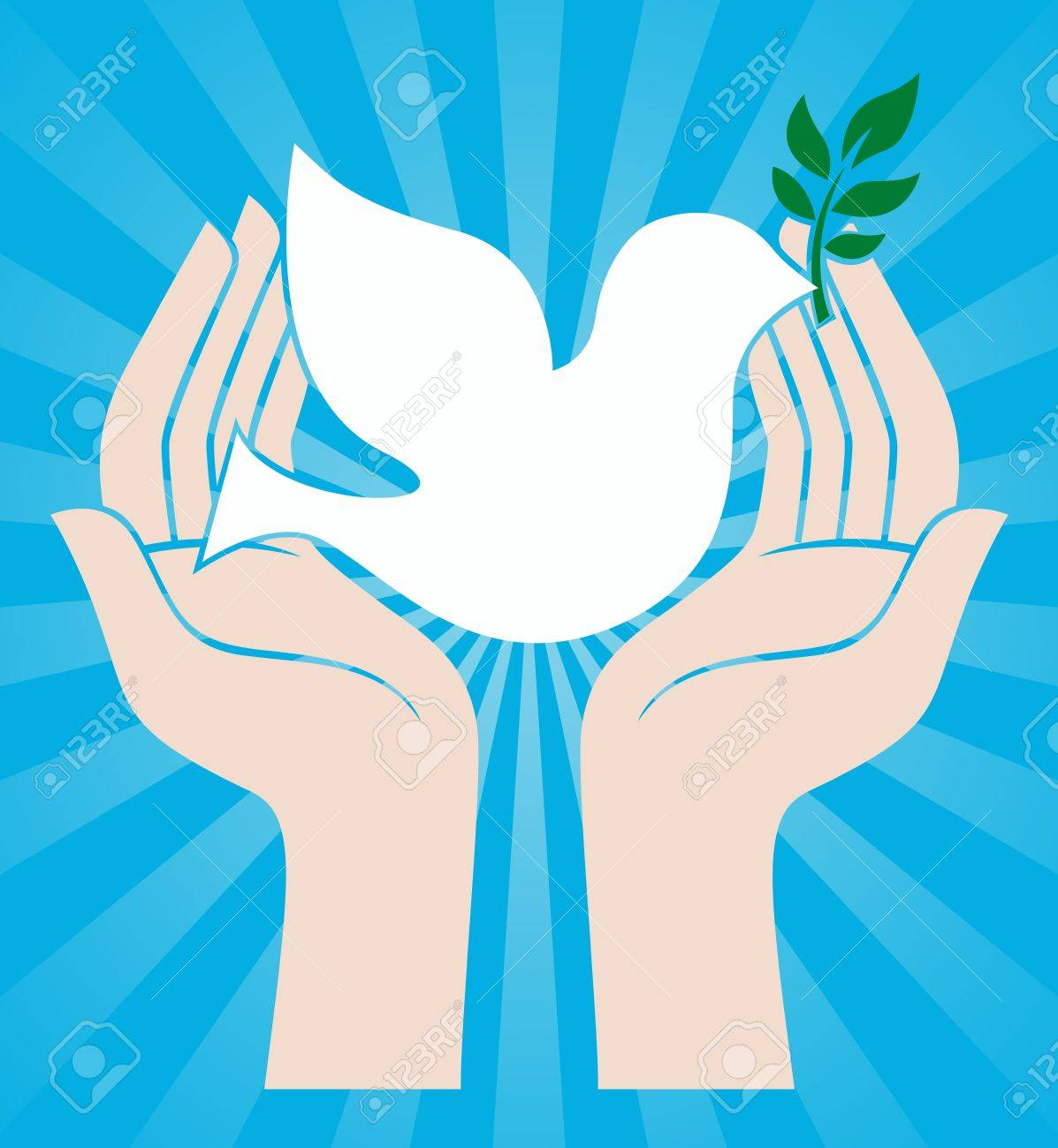 dove peace symbol holding an olive branch stock vector 17800289