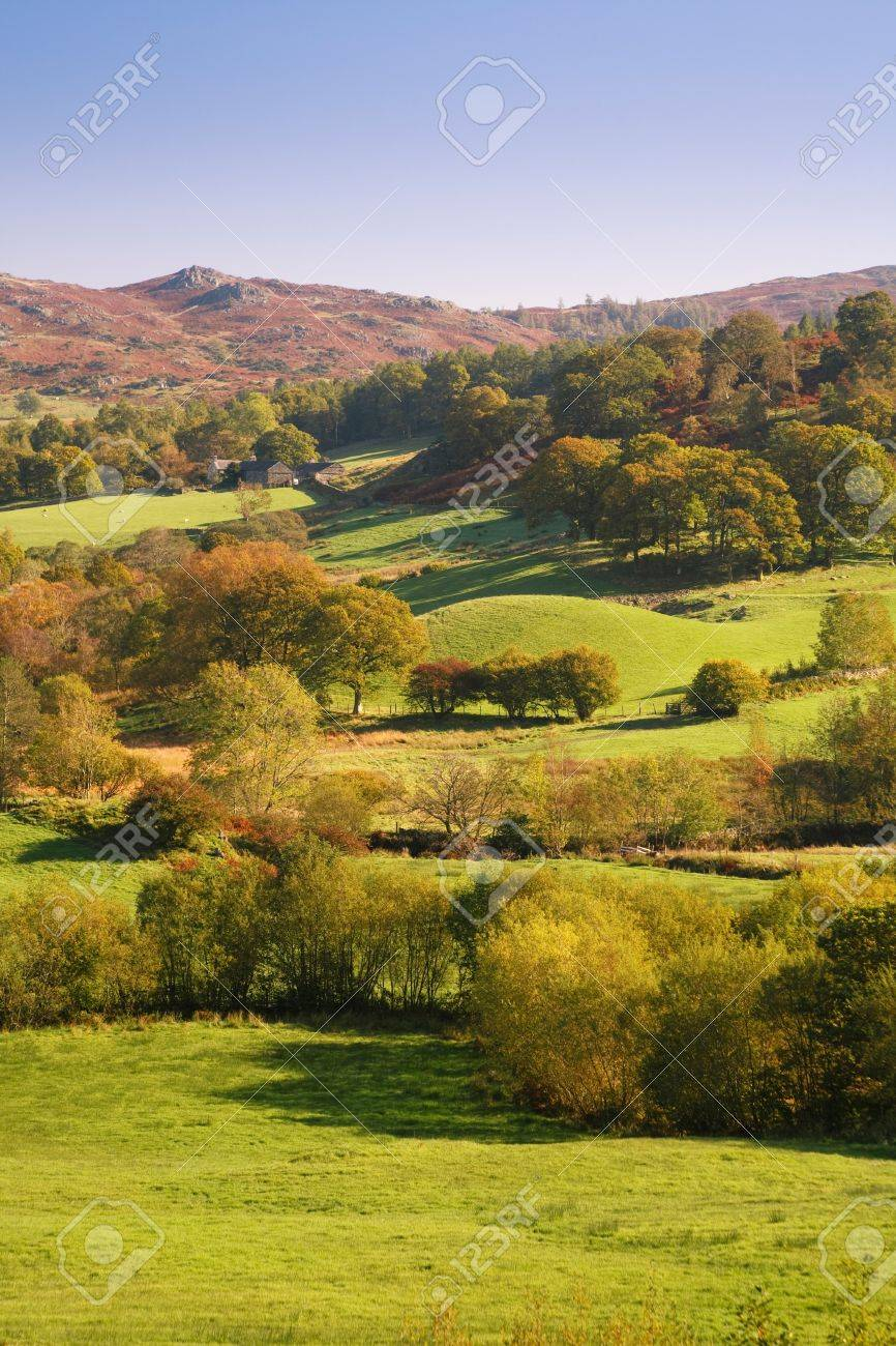 Countryside bathed in afternoon sunlight. Langdale, Lake District, Cumbria, UK Stock Photo - 10550867
