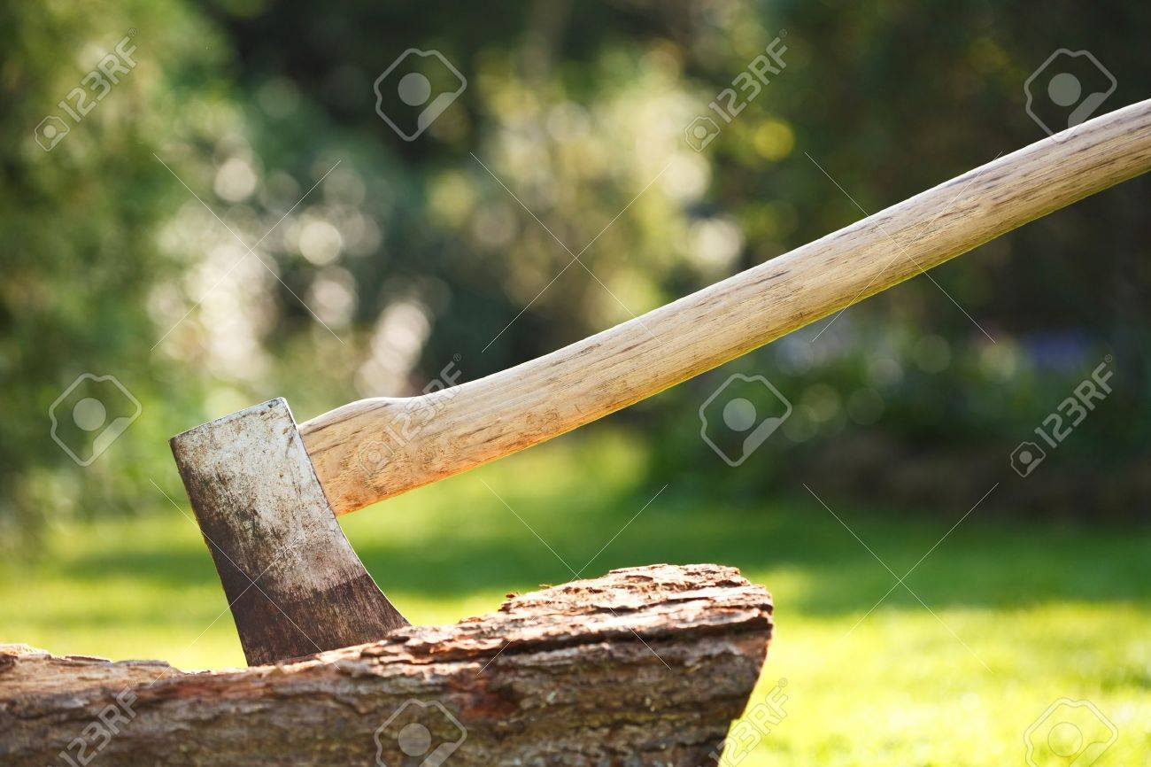Axe For Chopping Wood Embedded In A Tree Stump Stock Photo Picture