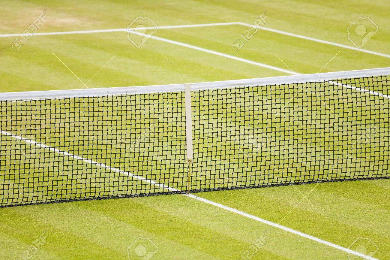Closeup Of A Lawn Tennis Court With Net And Lines Stock Photo Picture And Royalty Free Image Image 14288974