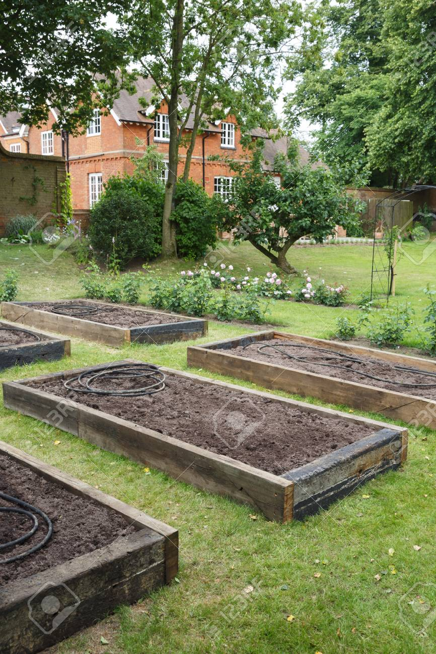 Picture of: Raised Beds Before Planting In A Vegetable Garden Within A Formal Stock Photo Picture And Royalty Free Image Image 112455024