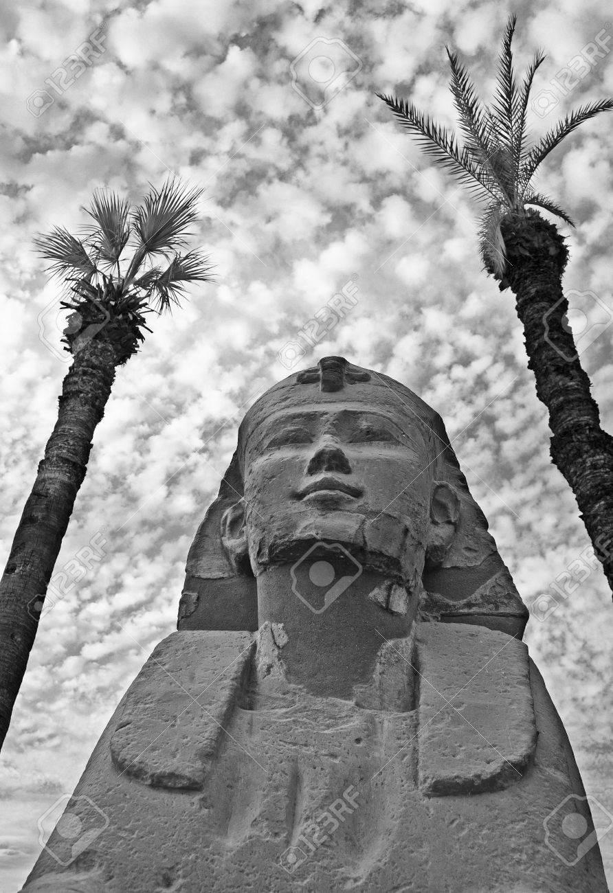 Pequeña Esfinge En El Templo De Luxor, Enmarcada Por Dos árboles En ...