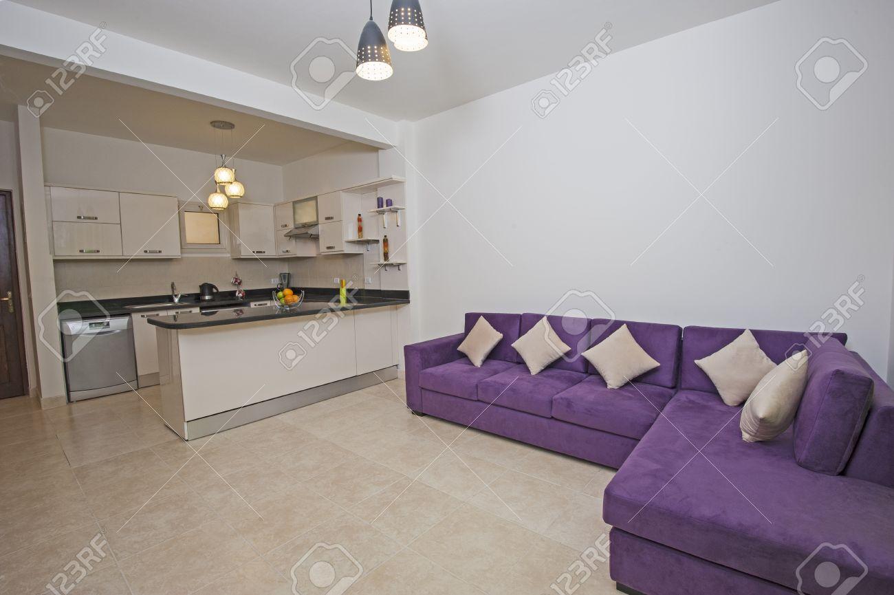 Diseño interior de apartamento de lujo sala de estar con cocina americana