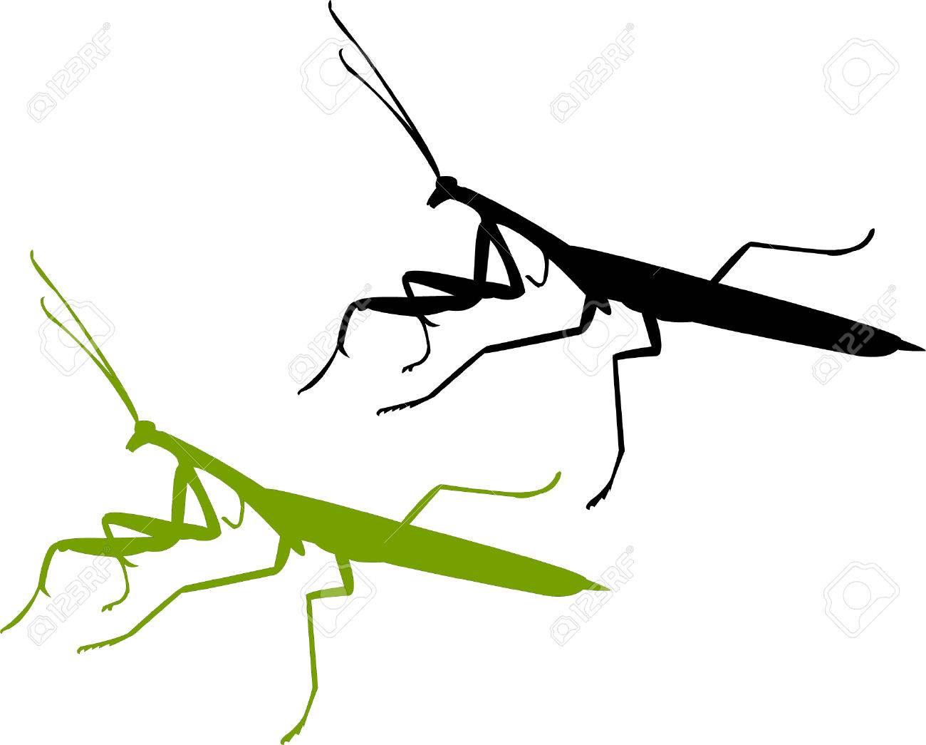 mayfly devotee bug silhouette vector