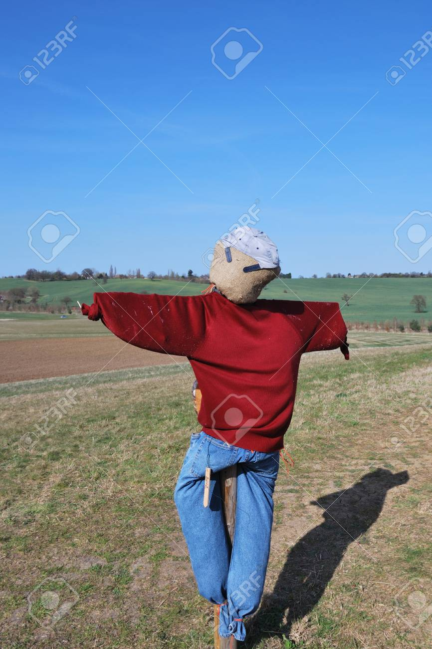 scarecrow in field Stock Photo - 13046426