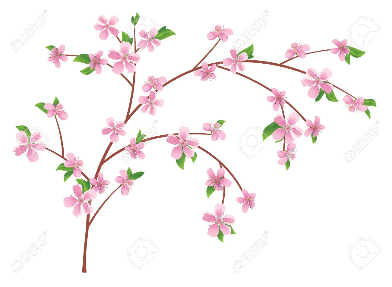 10 065 flowering stock illustrations cliparts and royalty free