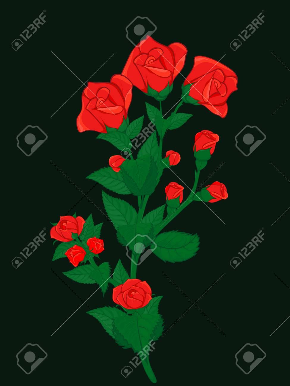 foto de archivo ramo de rosas tupidas salpicado de pequeas y grandes yemas de rosas rojas para tarjetas saludos y decoraciones - Fotos De Rosas Rojas Grandes