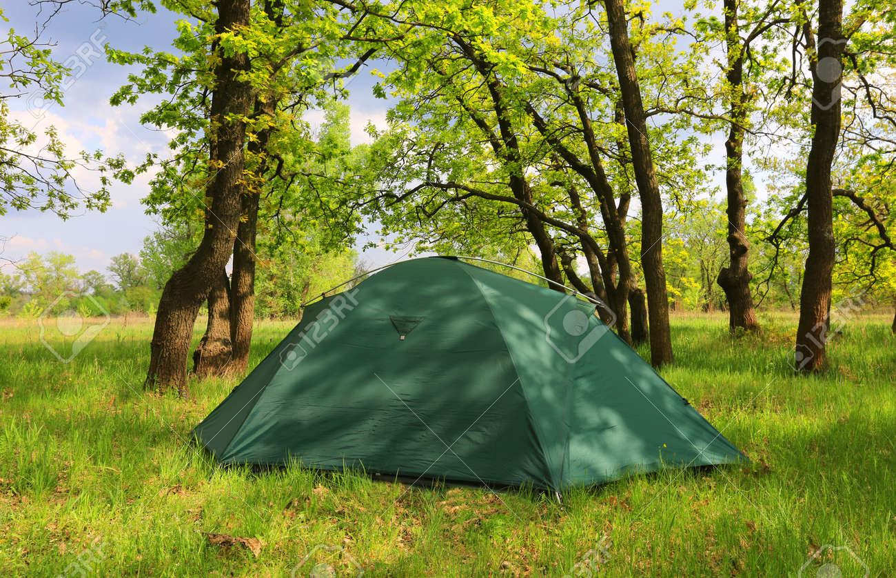 Landscape with tourist tent in green spring forest - 143459783