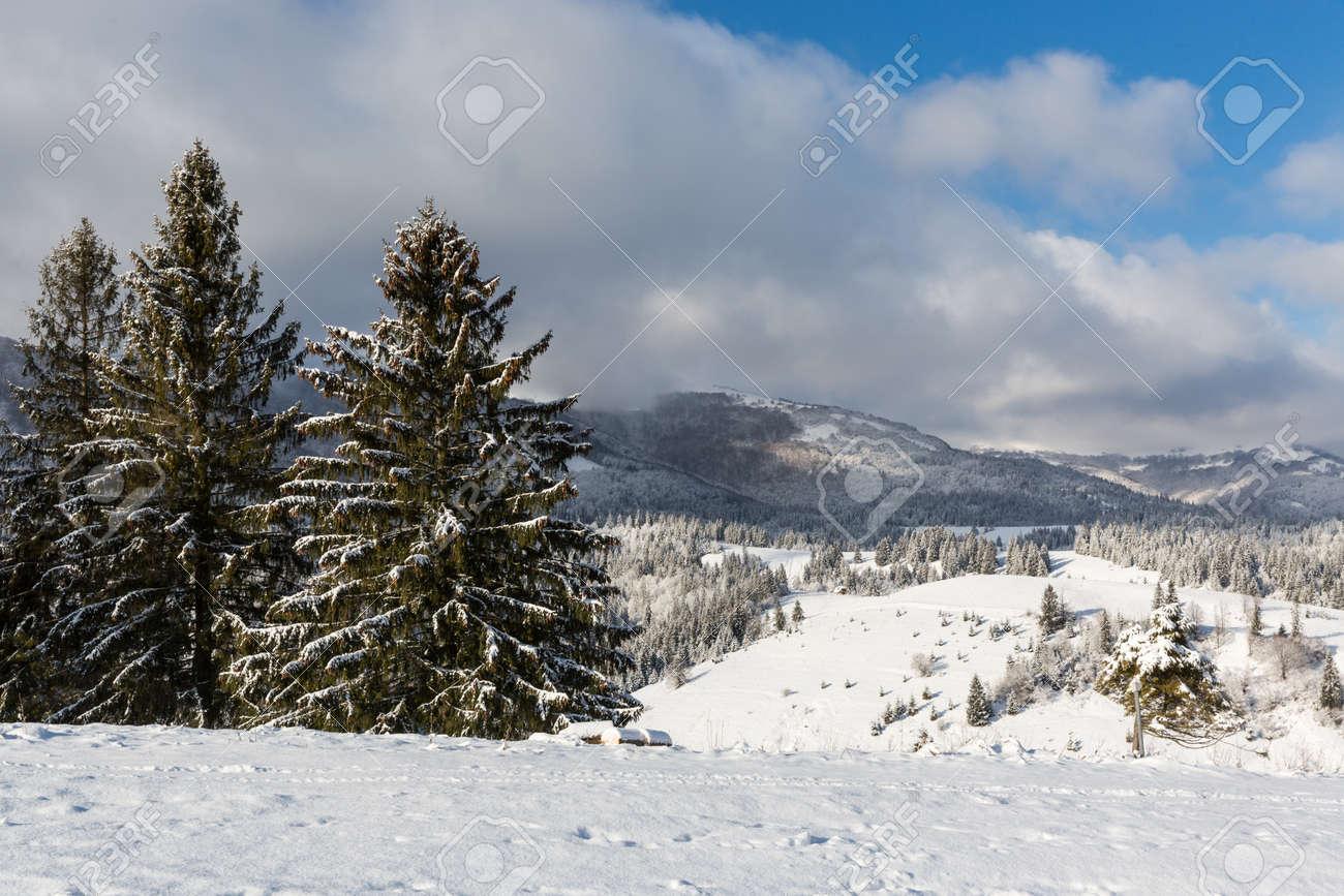 Nice winter day in Carpathian mountains. Take it in Ukraine - 165451650