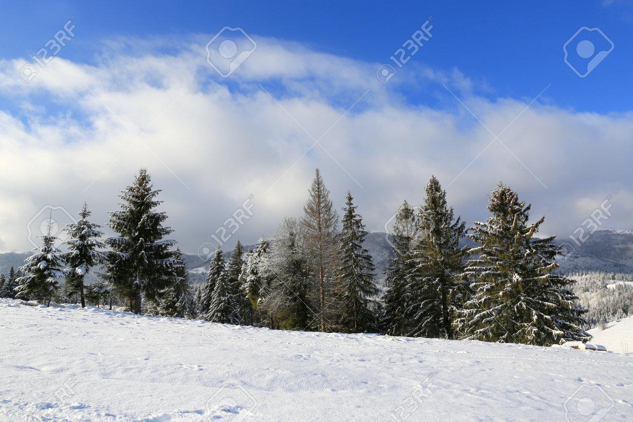 winter landscape in Carpathians, Ukraine - 165452360