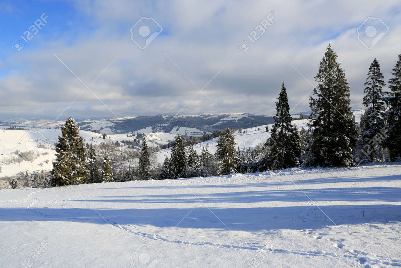 nice winter landscape in Carpathian mountains, Ukraine - 165452337
