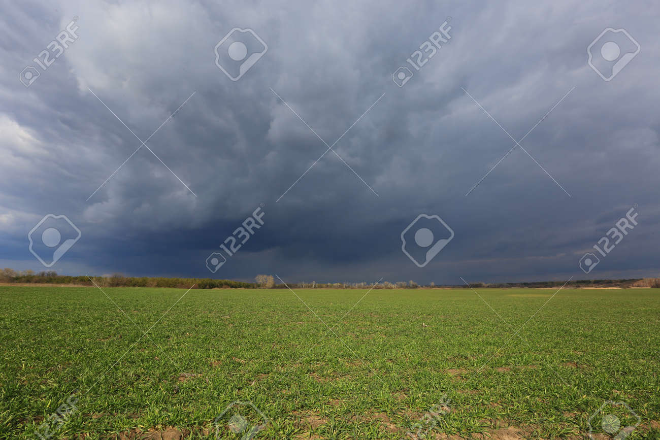 thunderstorm clouds in sky over spring green farming field - 167479203