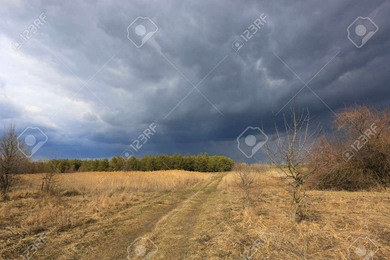 thunderstorm in spring stepe with heavy clouds in sky over dry grass field - 168208823
