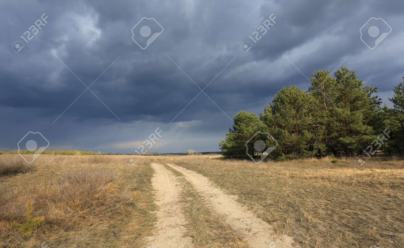 thunderstorm sky over dirt road in steppe - 168208845
