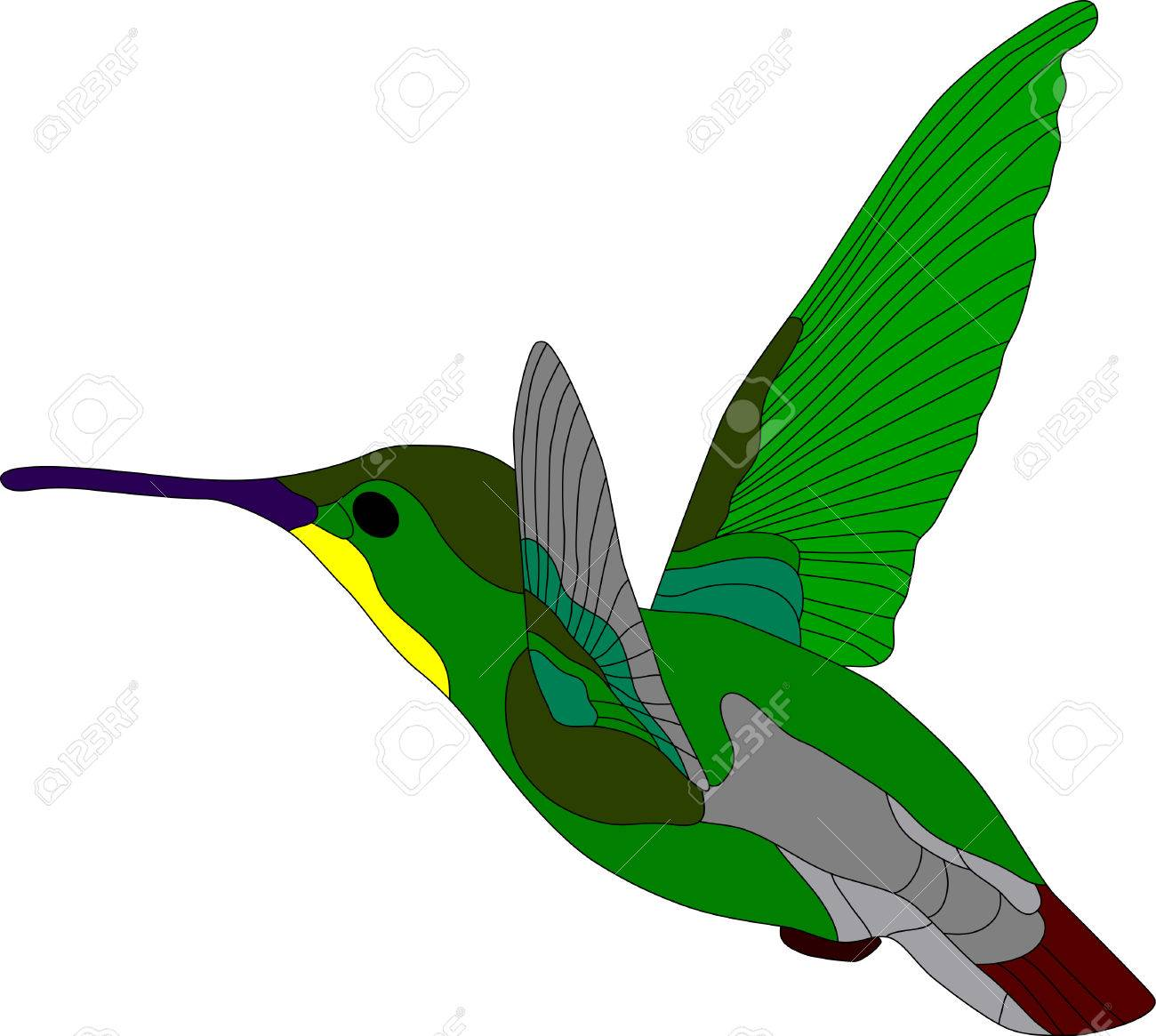 vector - hummingbird isolated on white background Stock Vector - 4325108
