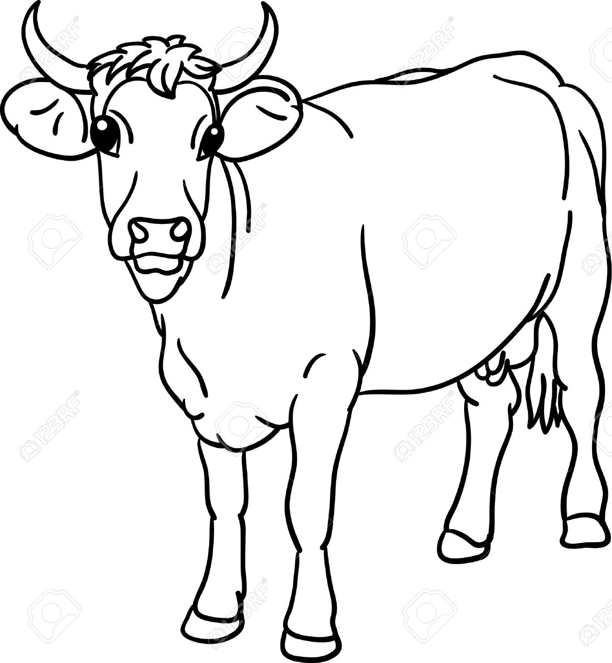Cow Stood The View From Front Stock Vector