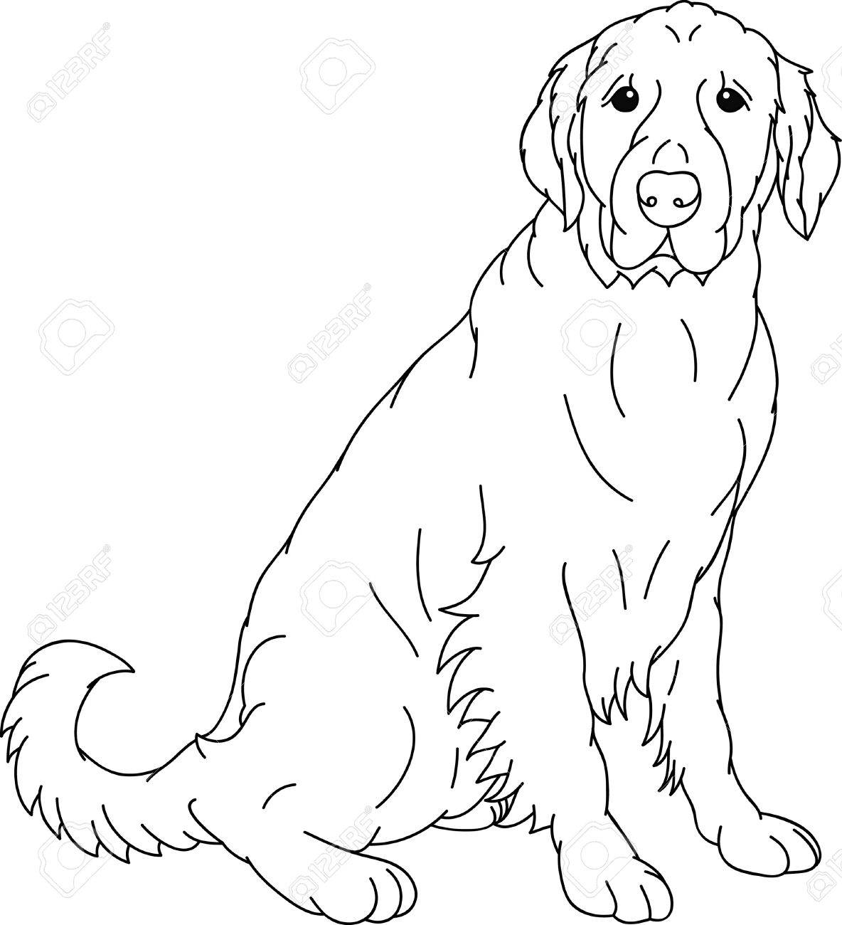 Outline Of Dogs Face Stock Photos & Pictures. Royalty Free Outline ...