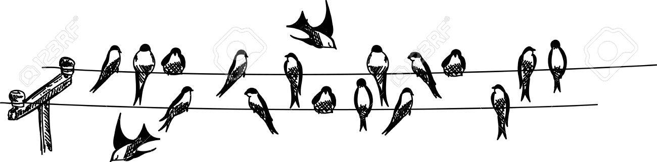 Swallows Sitting On Phone Wire Royalty Free Cliparts, Vectors, And ...