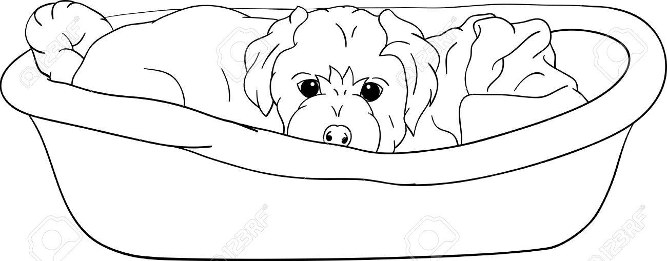 small puppy lying in cot, isolated on background Stock Vector - 9293810
