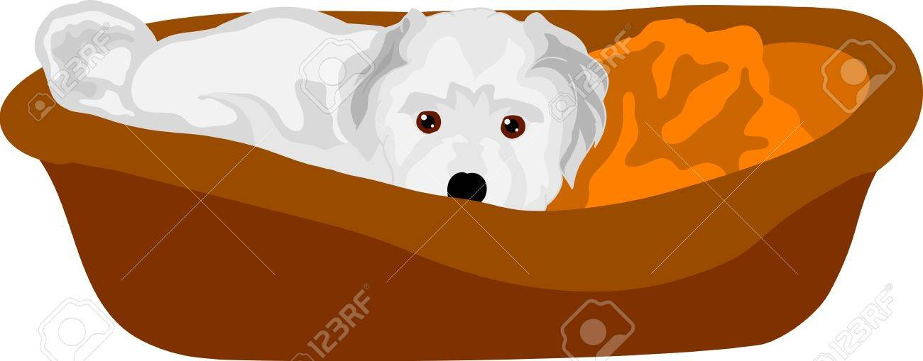 vector - small puppy lying in cot, isolated on background Stock Vector - 9334295