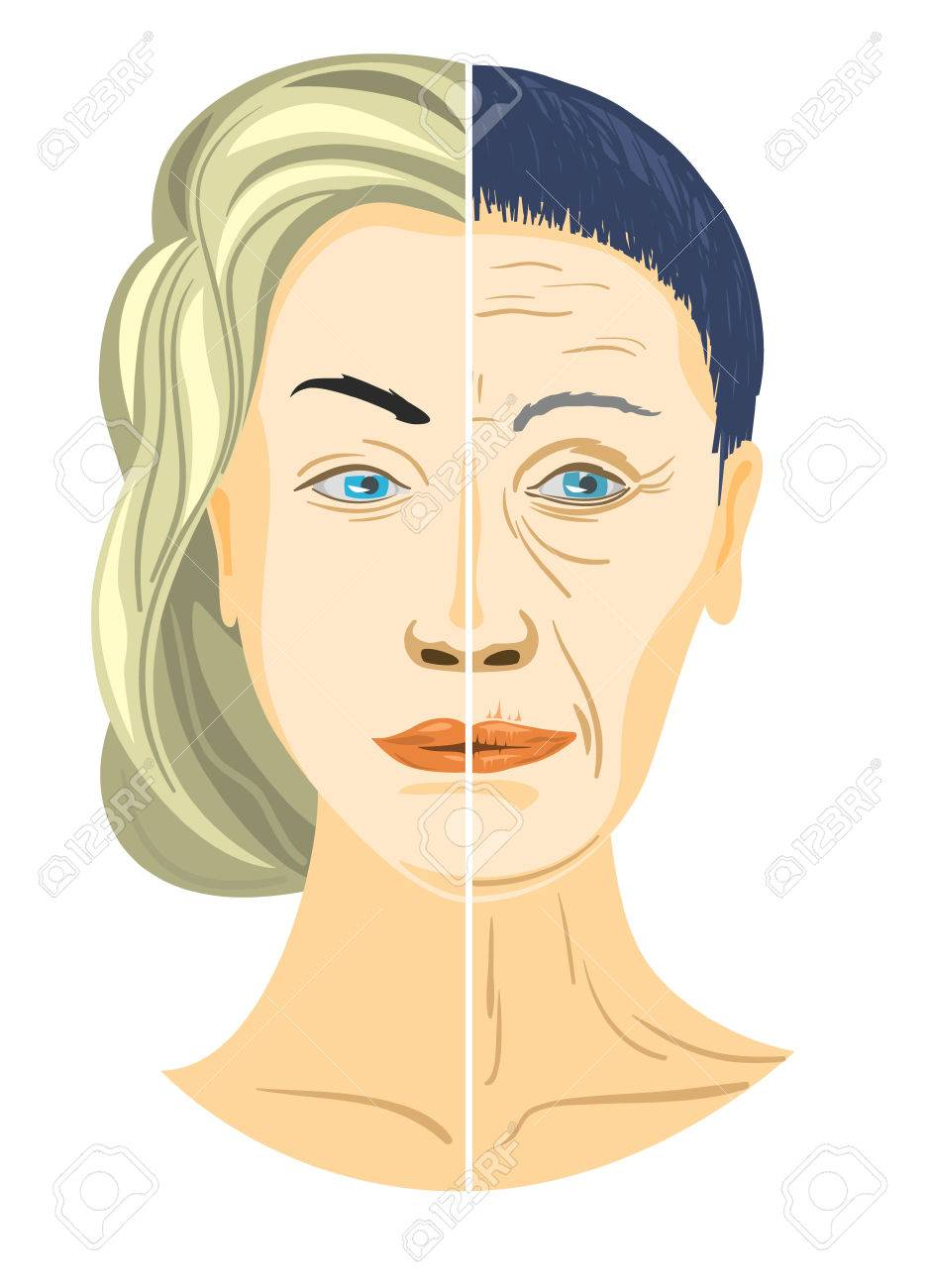 Vector illustration of a two parts of face - 56837497