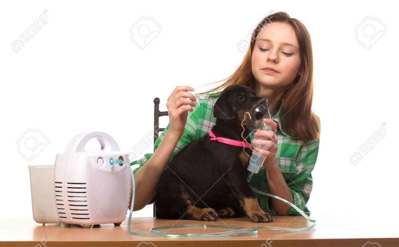 masque respiratoire pour chien