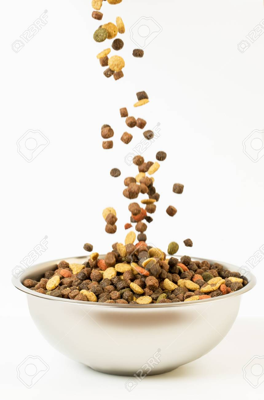 Pet food falls into the bowl for feeding. - 70103541