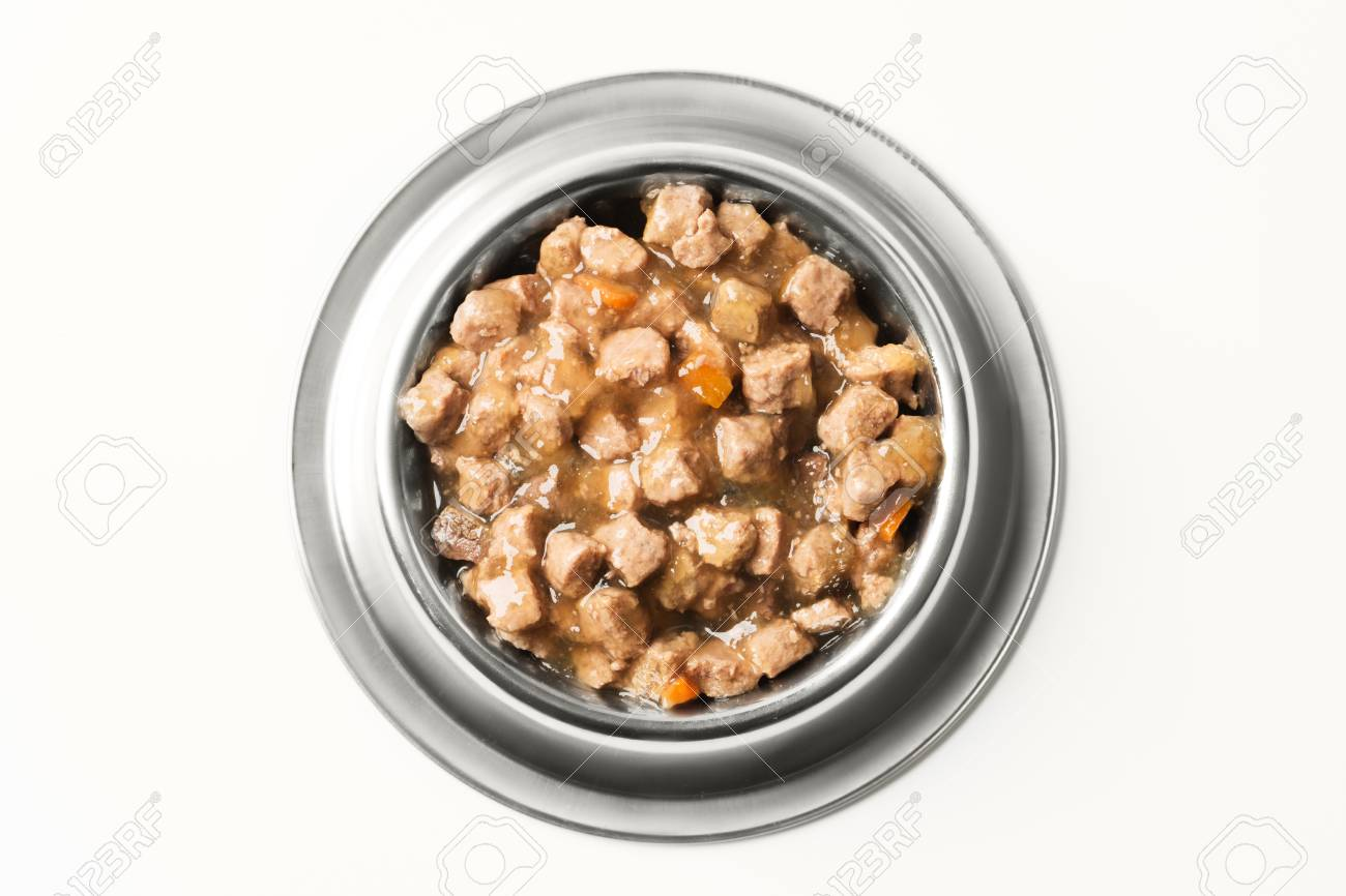 wet food for dogs and cats in silver bowl. - 72069806