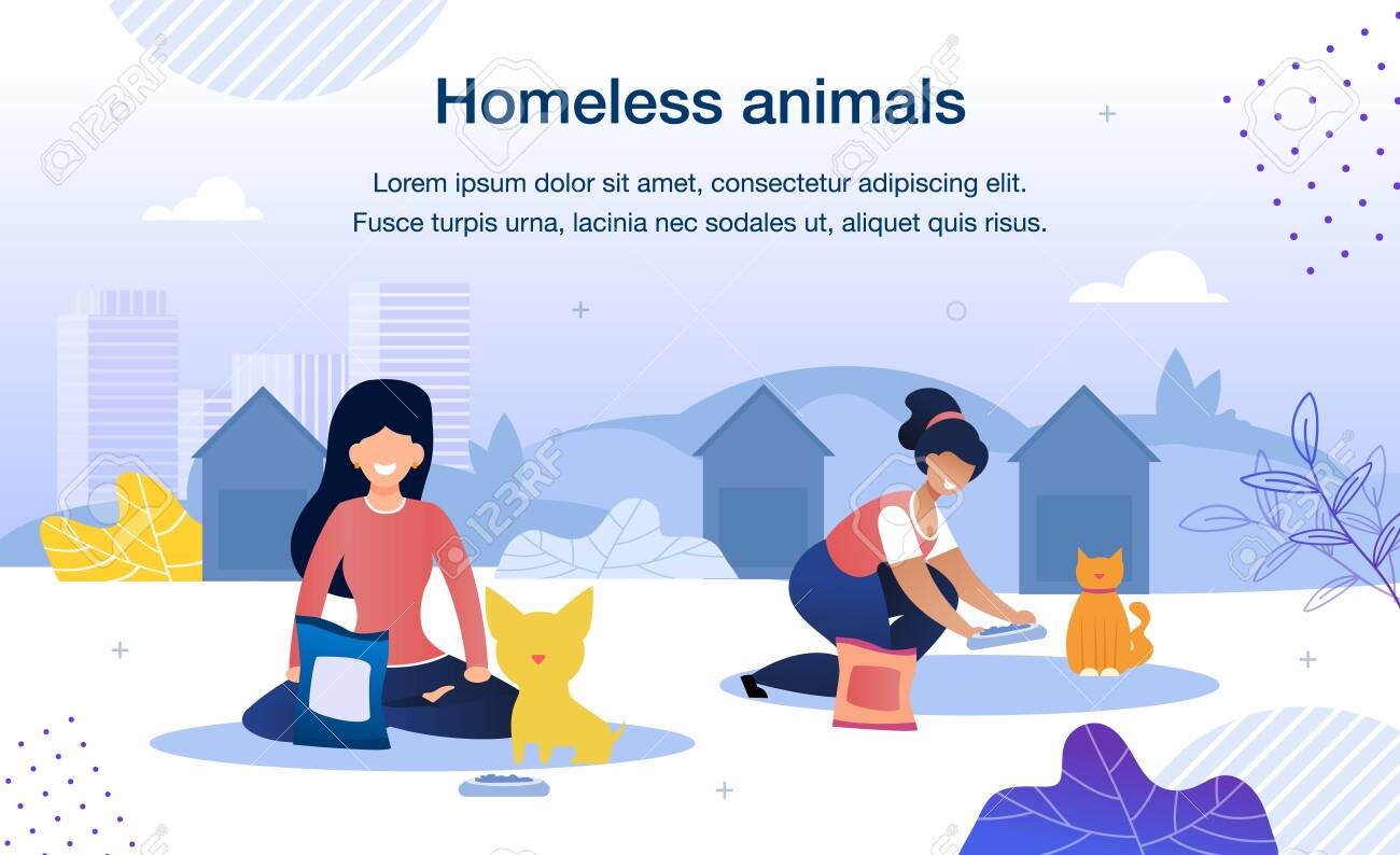 Homeless Animals Care and Rescue Trendy Flat Vector Banner, Poster Template. Female Volunteers, Multinational Women Taking Care, Feeding Stray Cat and Dog in Animal Shelter Territory Illustration - 143153933