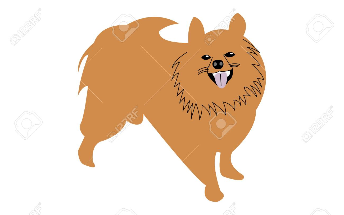 Cute Pomeranian Dog Cartoon Illustration Royalty Free Cliparts Vectors And Stock Illustration Image 96610327