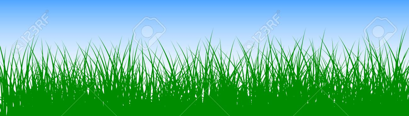 Field, green grass on white background - stock vector - 102794933
