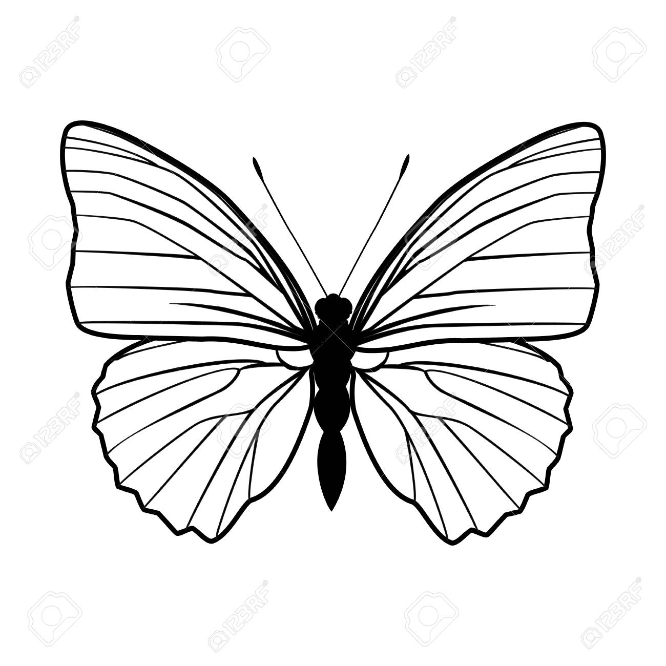 Butterfly Stencil By Hand Drawing – Stock Vector Royalty Free ...