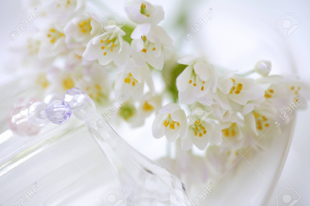 Alum Of The Small White Flowers Bouquet Stock Photo, Picture And ...